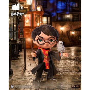 HARRY POTTER - HARRY POTTER MINICO
